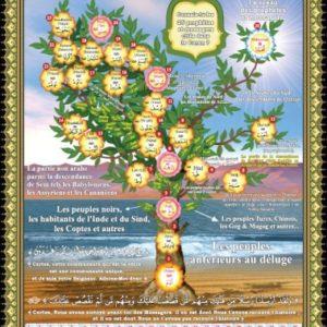 Photo Grand Puzzle L'arbre des Prophètes (38 x 26 cm) - Orientica
