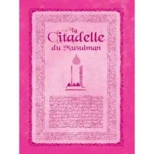 Photo Citadelle du musulman rose - Sana